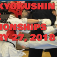 KATA, KUMITE, SILENT AUCTION, EVENING SOCIAL, TRAINING